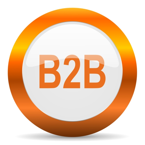 b2b computer icon on white background